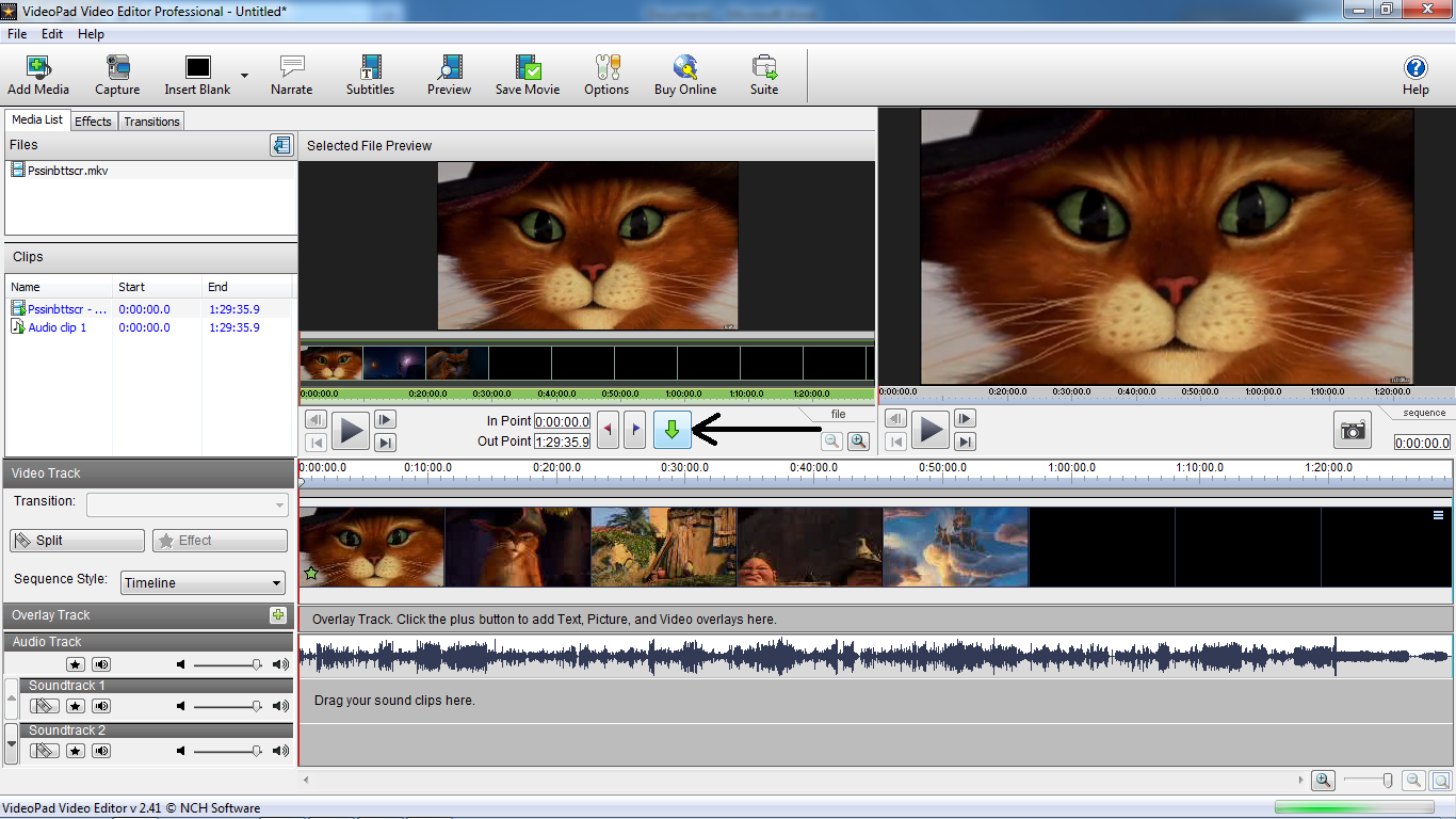 Videopad Video Editor Pro 8.69 Portable на русском